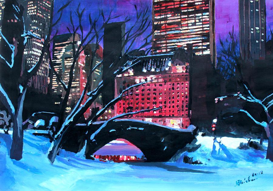 new-york-city-christmas-eve-in-central-park-m-bleichner.jpg